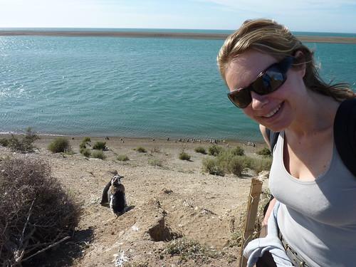 Peninsula Valdes - magellanic penguins 5