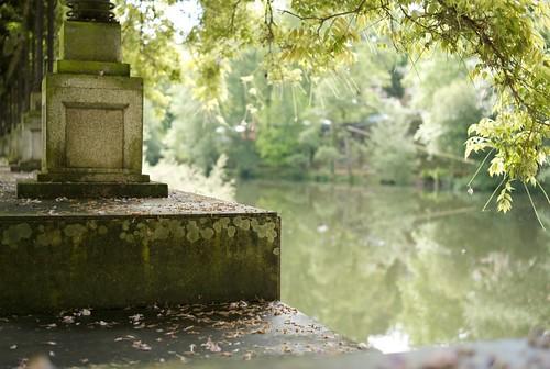 Jardim margem do Rio Vouga