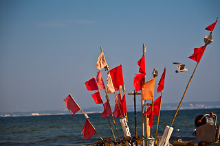 תמונה של textile free area. beach water strand landscape island spring wasser flags balticsea insel rügen landschaft ostsee ruegen frühling fisherboat fahnen fischerboot
