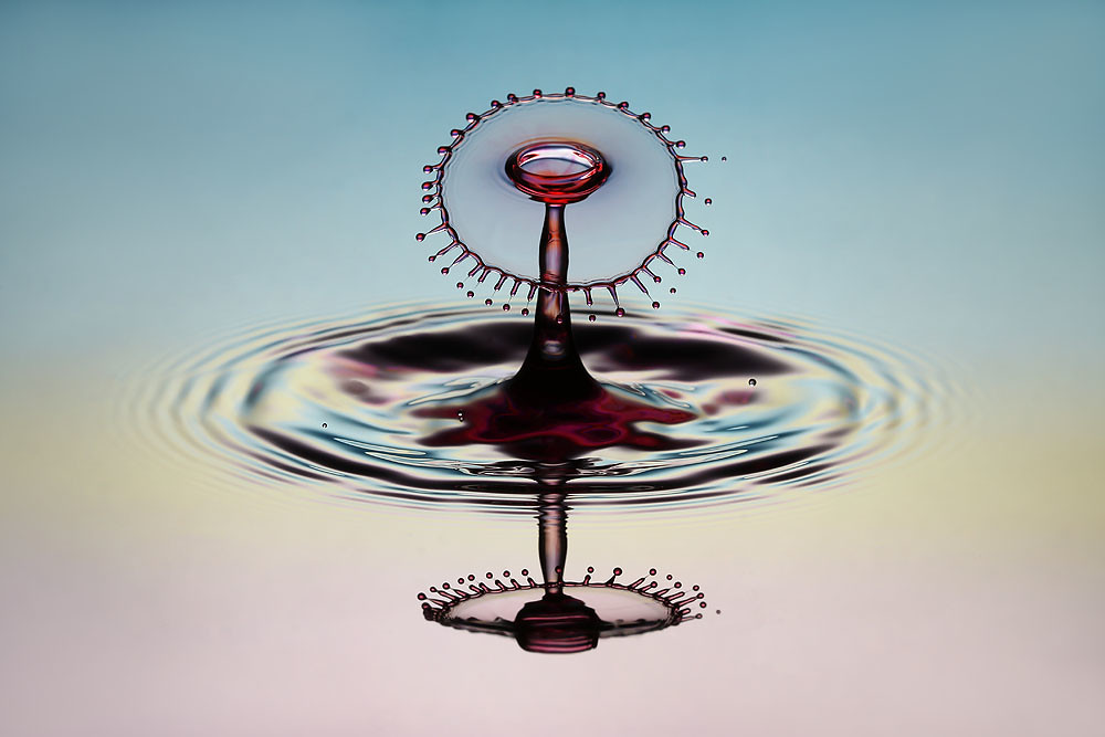 Water Spinner