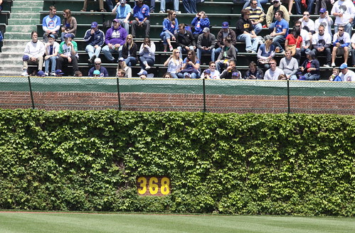 368 Feet, Wrigley Field Ivy
