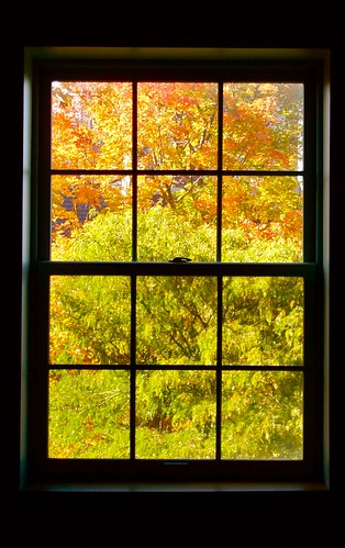 window nature panes bowdoin