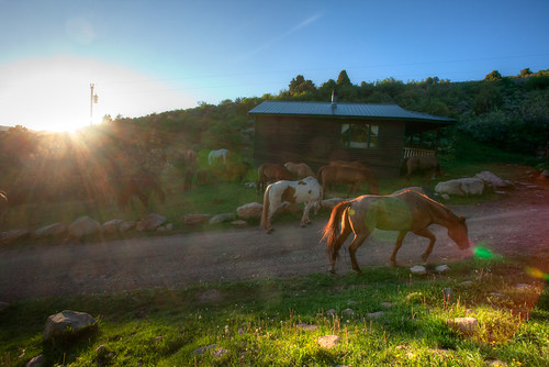 ranch sunset horses cabin colorado br mccoy bmr duderanch blackmountainranch