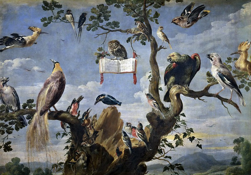 Frans Snyders - Bird Concert (c.1629-1630)