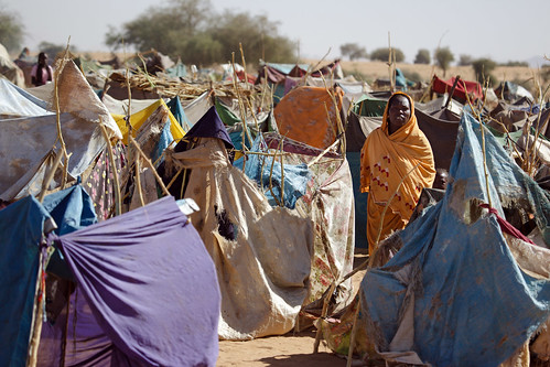 As Darfur Fighting Continues, Thousands Flee to IDP Camp