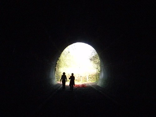 Through the tunnel