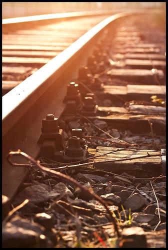 wood light sunset sun sunlight reflection metal backlight germany deutschland evening abend licht sonnenuntergang hessen rail tendril rails holz sonne metall reflexion darmstadt gleise gegenlicht hesse gleis railtrack sonnenlicht ranke