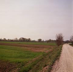 "Tipical ""tarajo"" landscape"