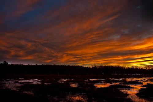 winter sunset newyork colors reflections twilight dusk swamp sullivancounty