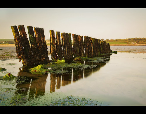 ocean wood longexposure ireland sunset sea seascape seaweed beach pool pier sand rocks cork jetty kelp nd poles rockpool groynes harbourview kilbritain kilbrittain 10stop coolmain coolmaine killbritain killbrittain lcw500 coolmainestrand coolmainstrand coolemain coolemainstrand