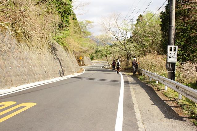 20110429_塔ノ岳(表尾根)_0006
