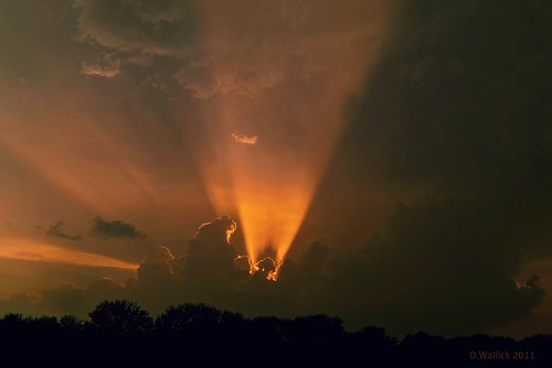 Nature's Lightshow