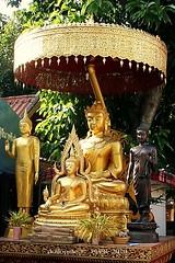 20101213_4311 Temples at San Pa Tong, วัดทึ่สันป่าตอง