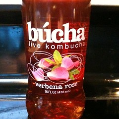 My favorite kombucha at Fermentation Festival blind tasting