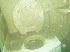 Toilet in one of the wrecks Image