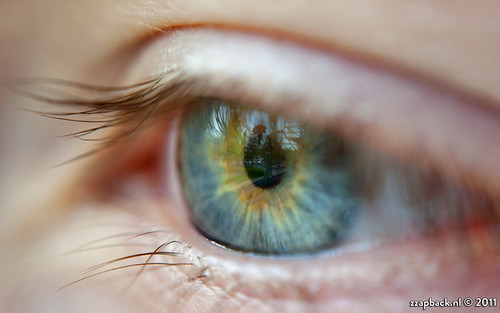 iris macro robert closeup de fun 50mm eyes rotterdam nikon fotografie f14 rob have enjoy pupil oog voogd d90 wimpers br2a bergselaan liskwartier omkeerring zzapback zzapbacknl robdevoogd