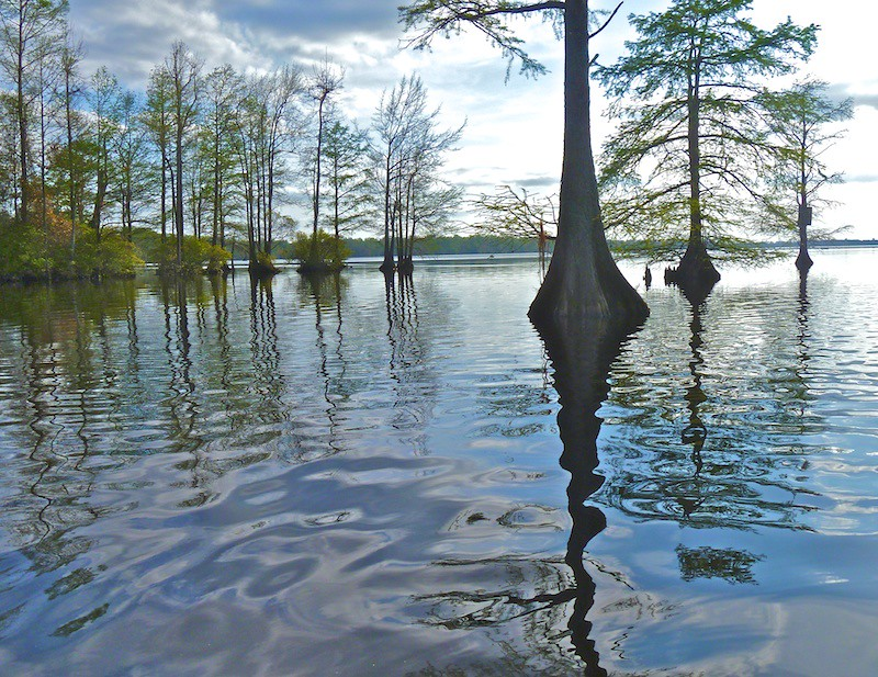 Great Dismal Swamp - Lake Drummond