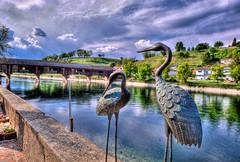 Blick auf die Rheinbrücke Diessenhofen – Gailingen