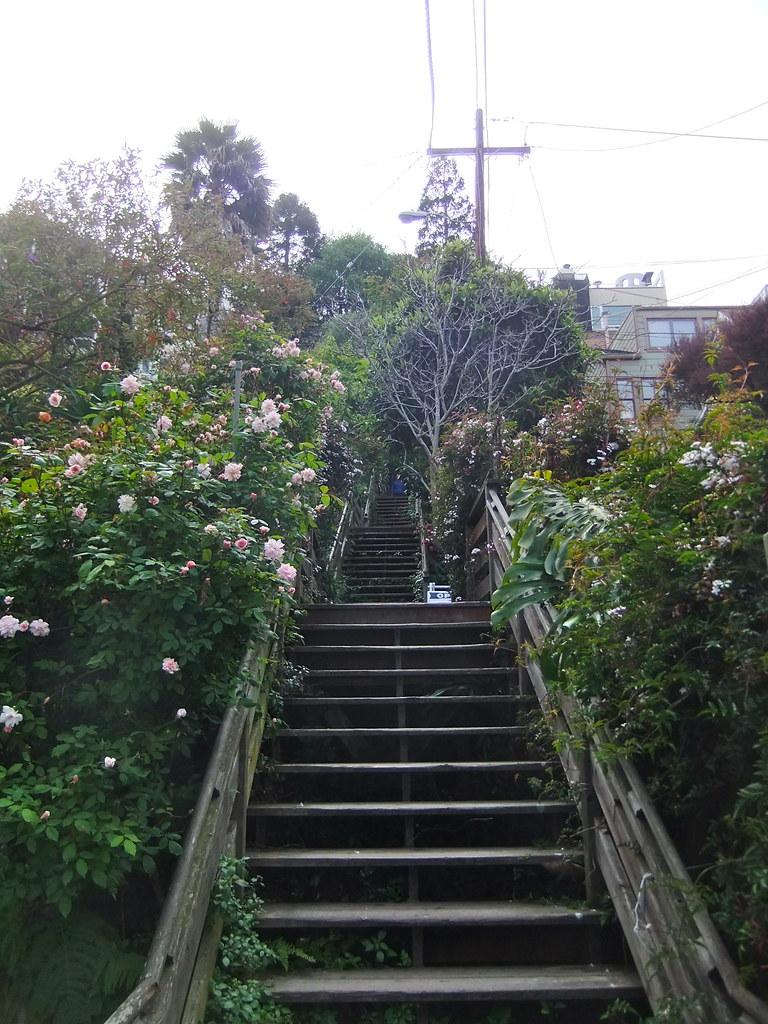 Filbert Steps San Francisco Tripomatic