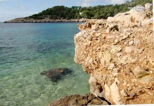 Cala-Salada-Ibiza-1