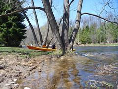Bronte Creek 04