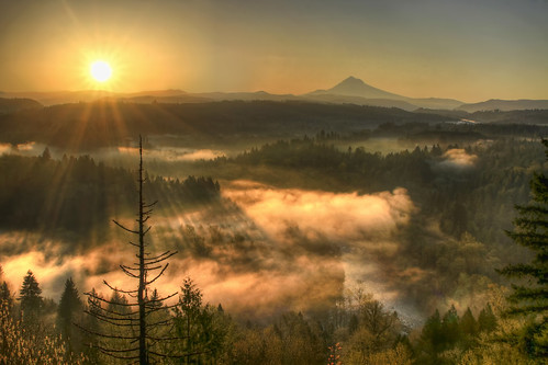 morning trees sky sun mist mountain nature fog oregon forest sunrise landscape star early scenic flare rays burst viewpoint mounthood hdr sandyriver jonsrud 3xp canoneos7d sigma2470mmf28ifexdghsm mygearandme sigma50th