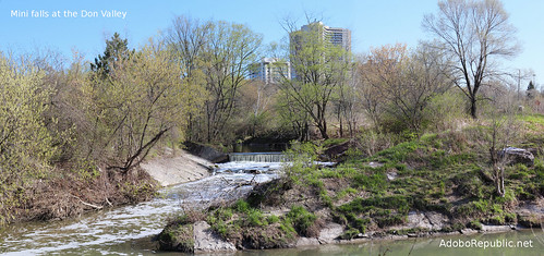 Wilket Creek Park in Toronto