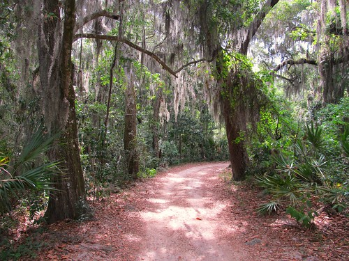 Timucuan Ecological and Historic Preserve and Fort Caroline National Memorial, Jacksonville, Florida, Path to Fort Caroline