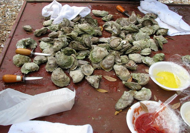 Oyster Roast -- 3 | Flickr - Photo Sharing!