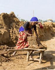 Brick Factory, India 2011