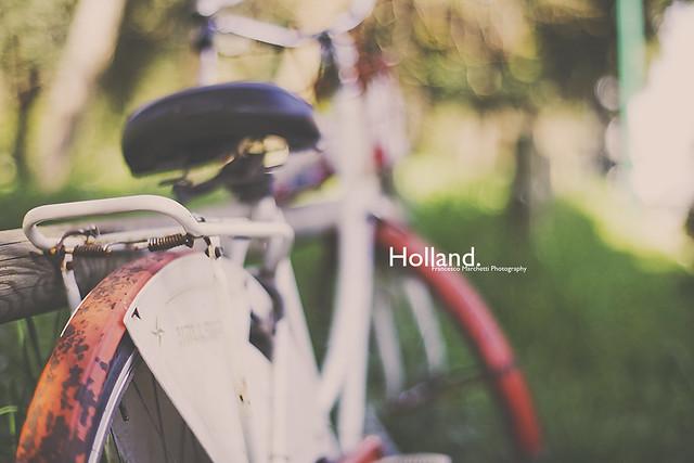 Holland - Beautiful Bokeh Photography