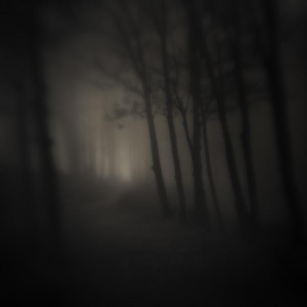 Landscape in Silence