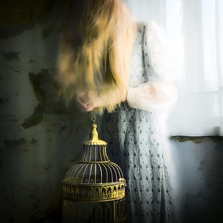 Girl with the Gilded Cage