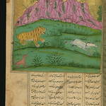 Illuminated Manuscript, Collection of poems (masnavi), A sick lion, inspired by a clever fox, hunts a donkey for its brain to cure his disease, Walters Art Museum Ms. W.626, fol. 245a