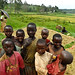 Children in rice - Rwanda (3)