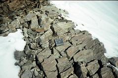 N Mt Schimansky sheared quartzofeldspathic gneiss (metarhyolite query) 4