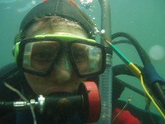 Diving: Babbacombe Bay (09-Jul-06) Image