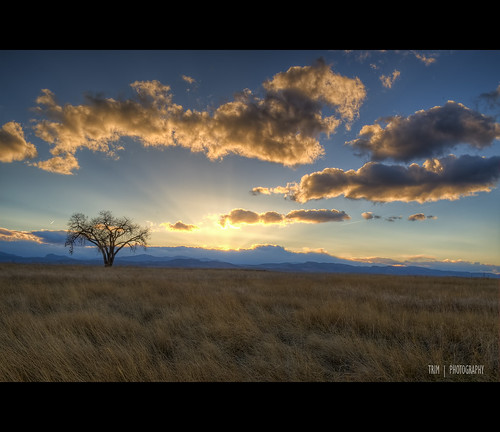 trees sunset summer nature nikon colorado open hdr spaces