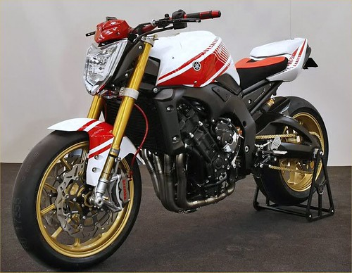 Infamous_R6's Ninja 250 Street Fighter Build - Page 6 ...  Infamous_R6'...