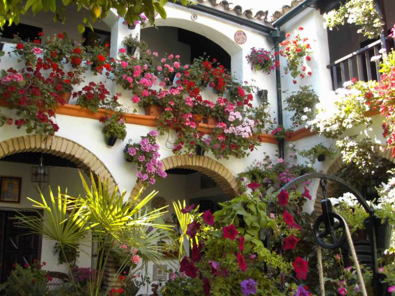 Jardineros en acci n patios andaluces - Patios interiores andaluces ...