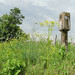 Lincoln Highway concrete post, Illinois