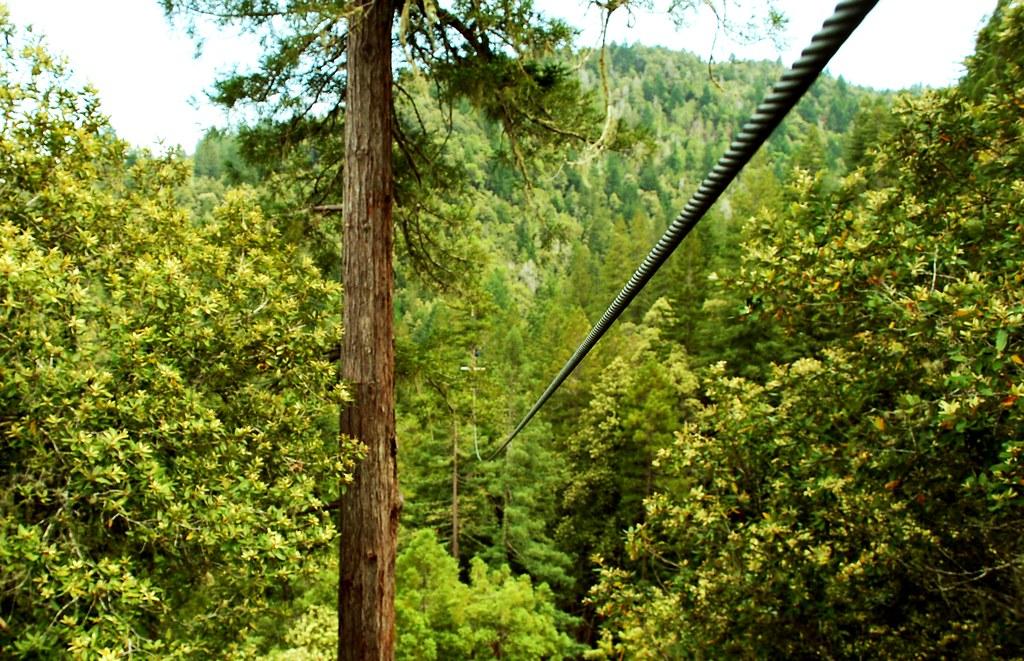 sonoma canopy tour zipline through the redwoods & sonoma canopy tour: zipline through the redwoods - a photo on Flickriver