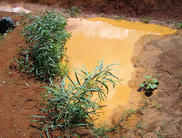 Ethiopia pokada watershed konso soil water conservatio for Soil and water conservation