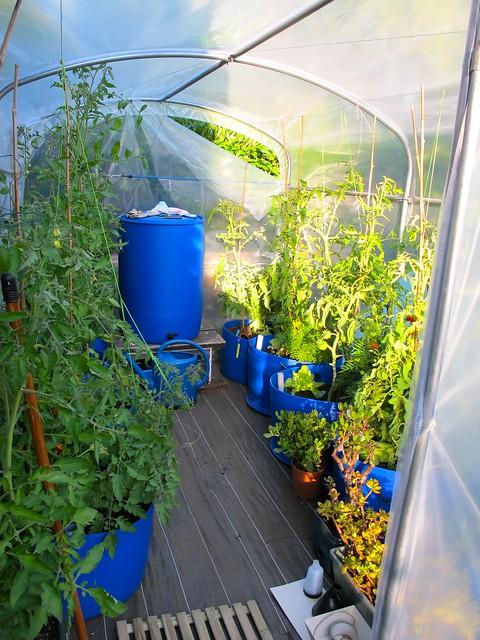 Sub irrigated planter made with a rain barrel bacs - Jardiniere reserve d eau plastique ...