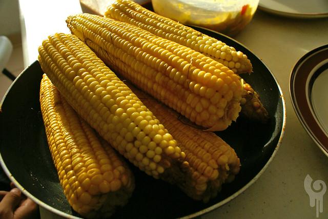 maíz galáctico