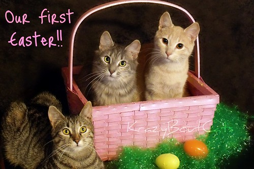 This is our First Easter!!