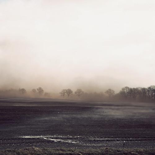 field landscape denmark spring mark duststorm danmark jutland jylland landskab forår 2011 dustcloud canoneos5dmrkii støvflugtpådenjyskehede støvsky