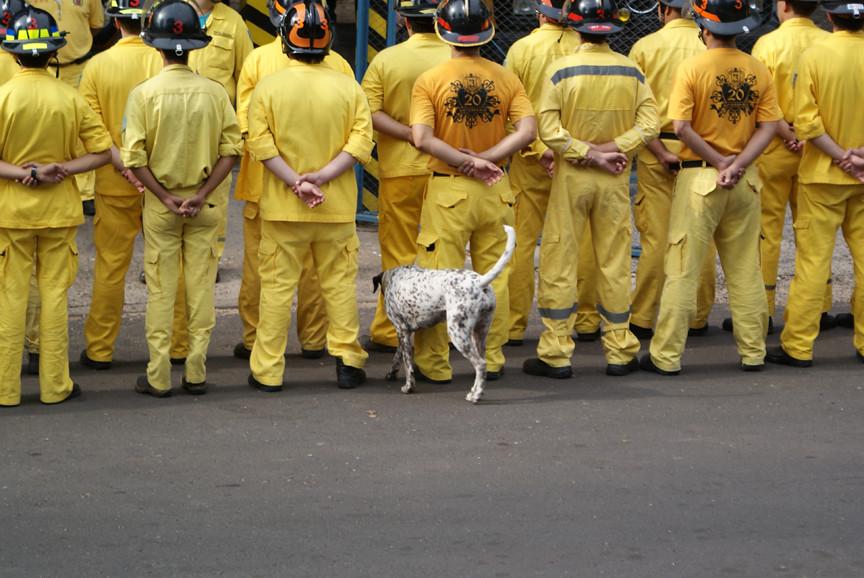 Firemen and dog 0459, Asunción, Paraguay