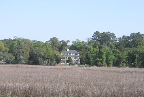 marsh wiregrass georgiacoast hudsoncreek