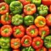 pimientos rojos............. y verdes by Peter L. Alcocer
